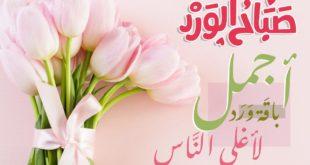 صباح الخير 12 jwahir.com