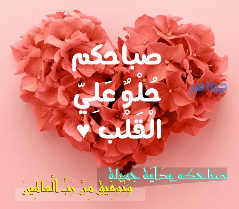 صباحكم حلو علي القلب