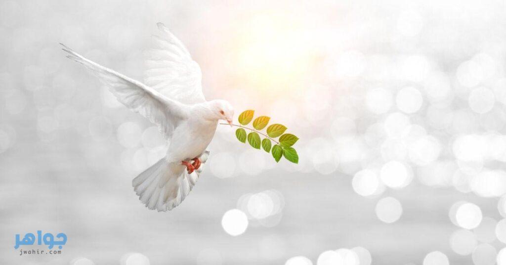 موضوع تعبير عن السلام