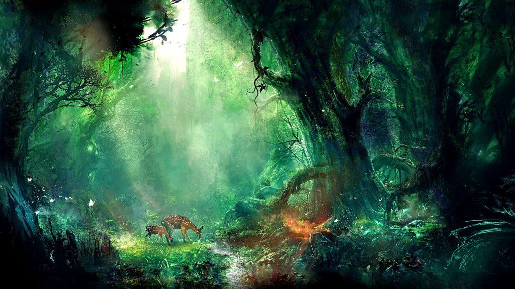 اجمل المناظر طبيعية غزالة في الغابة